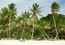 与棕榈树的美丽的白色海滩 免版税库存照片