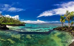 与棕榈树的自然无限岩石水池在热带海洋la 免版税库存照片