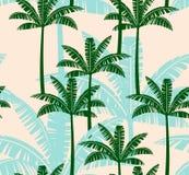 与棕榈树的风格化无缝的样式 库存照片