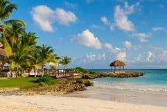 与棕榈树的晴朗的梦想海滩在沙子。 热带天堂。 多米尼加共和国,塞舌尔群岛,加勒比,毛里求斯。 葡萄酒 库存图片