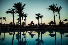 与棕榈树的水池在美好的日落期间的海洋附近 夏天职业 库存图片
