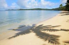 与棕榈树阴影的沙滩, Nananu我镭海岛,斐济 库存图片