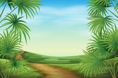 与棕榈植物的一个美好的风景 免版税图库摄影