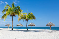 与棕榈的加勒比海滩在古巴 免版税库存照片