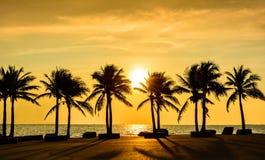 与棕榈的意想不到的热带海滩在日落 免版税库存照片