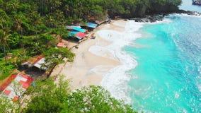与棕榈的热带海滩,绿松石海洋和波浪,天堂海岛鸟瞰图  影视素材