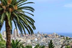 与棕榈的热那亚老市视图 图库摄影