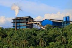 与棕榈种植园的山景 库存照片