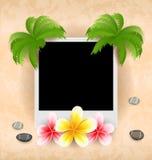 与棕榈,花赤素馨花,海小卵石的空的照片框架 免版税库存图片