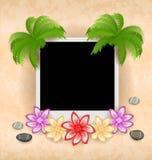 与棕榈,花,海小卵石的照片框架 免版税库存照片