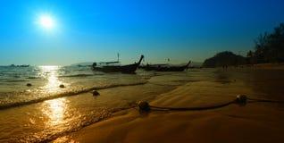 与棕榈leavs的日落 库存照片