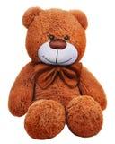 与棕色弓的经典玩具熊 库存图片