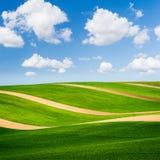 与棕色条纹和完善的天空的美好的绿色领域 免版税库存图片