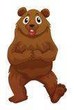 与棕色毛皮的北美灰熊 皇族释放例证