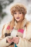 与棕色毛皮盖帽的可爱的年轻白种人成人 有华美的戴裘皮帽的嘴唇和眼睛的美丽的白肤金发的女孩,室外 库存图片