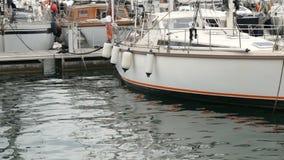 与棕色海鸥的美好的大白色坐在西班牙海湾的一个木码头,反对白色背景  影视素材