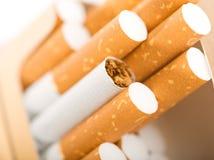 与棕色过滤器的香烟 免版税库存照片