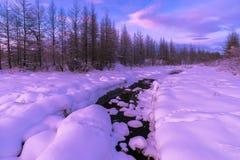 与森林、多云天空和河的冬天风景 免版税图库摄影