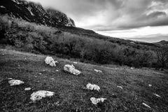 与森林、山和多云天空的黑白风景 免版税库存照片