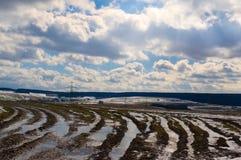 与森林、雪、草甸春天和戏曲的一个风景 免版税库存图片