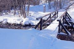 与森林和河的冬天风景 图库摄影