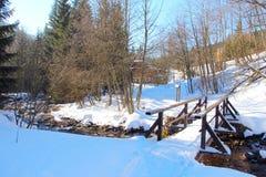 与森林和河的冬天风景 免版税库存照片