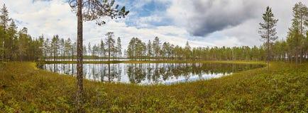 与森林和湖的芬兰全景风景 芬兰enviro 库存照片