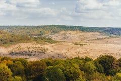 与森林和美丽的天空的自然风景 免版税库存照片