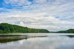 与森林湖的夏天风景在蓝色多云天空下 库存图片