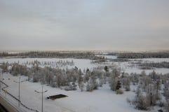 与森林的冬天landskape在晚上日落的雪的 北部 免版税库存照片