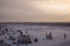 与森林的冬天landskape在晚上日落的雪的 北部 库存图片