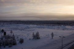 与森林的冬天landskape在晚上日落的雪的 北部 库存照片