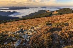 与森林的在一个草甸的山坡和云彩在罗马尼亚 免版税库存图片