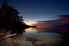 与森林的海滩日落 免版税库存照片