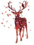 与森林的雄鹿剪影 库存图片