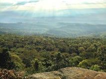 与森林的顶视图山 免版税库存照片