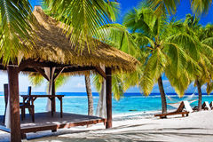 与椅子的眺望台在与棕榈树的离开的海滩 免版税库存照片
