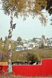 与椋鸟房子的桦树在村庄、天空和红色篱芭的背景站立 库存图片