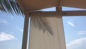 与植物和天空的小屋 免版税图库摄影