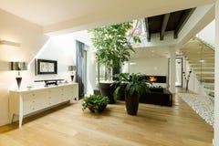 与植物和天窗的宽敞楼梯 库存照片