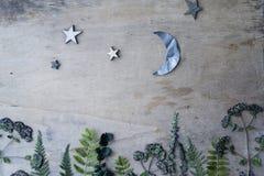 与植物和星的木背景 免版税库存图片