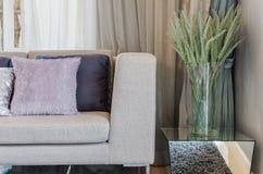 与植物的客厅现代样式玻璃花瓶的 免版税库存照片