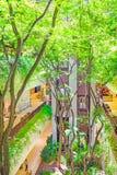 与植物的生态大厦装饰的 免版税库存图片