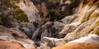 与植物的落矶山脉在一好日子 图库摄影