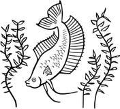 与植物的Plakat Betta鱼 皇族释放例证