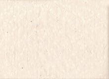 与植物纹理和剪影的手工纸背景 背景坏的老纸张 手工制造花纸板料 图库摄影