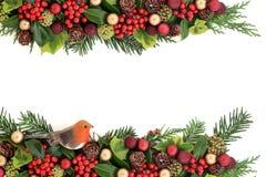 与植物群和装饰的圣诞节边界 免版税库存图片