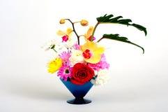 与植物群的陶瓷器 库存图片