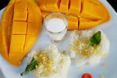 与椰奶混合和成熟芒果的黏米饭 免版税图库摄影