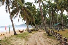 与椰子树和吊床的热带海滩 库存图片